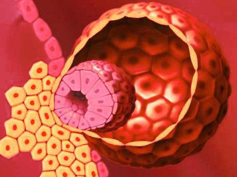 Когда происходит имплантация эмбриона после переноса
