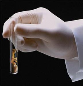 Криопротокол ЭКО- протокол оплодотворения, разделенный во времени