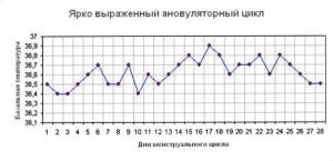 Ановулятроный цикл график базальной температуры