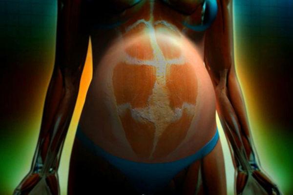 Как опускается живот перед родами