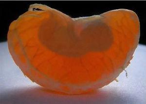 Можно ли есть мандарины во время беременности