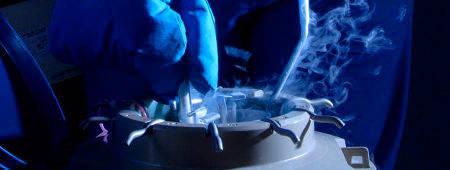 Крио перенос бластоцисты на какой день цикла