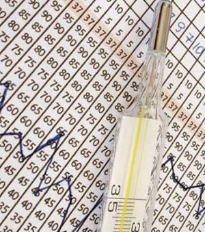 Измерение базальной температуры после переноса