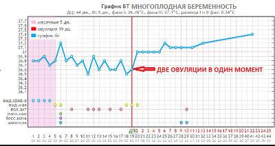 График базальной температуры при одномоментной двойной овуляции