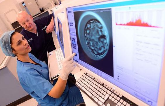 Обязанности эмбриолога