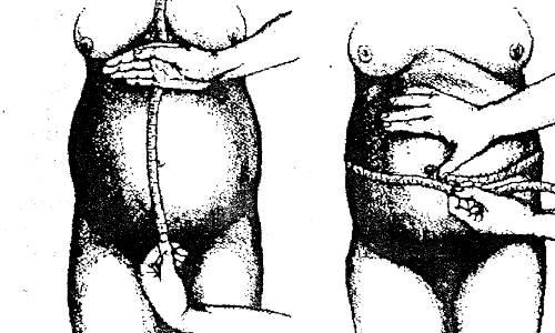 Расположение матки по неделям беременности